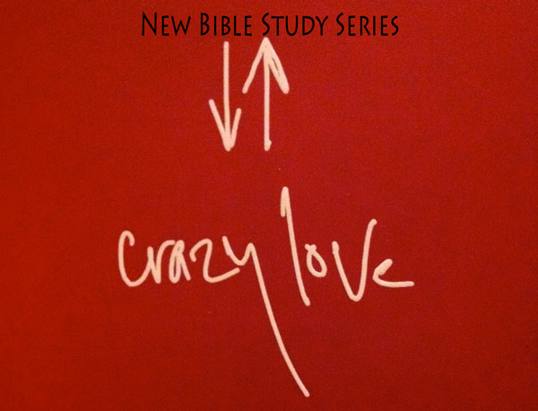 Crazy Love, Small Group DVD Curriculum: Francis Chan ...